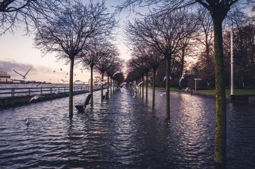 """Bild """"Hochwasser im Stadtgarten"""" des Fotografen Björn Bremer alias Takin Shotz"""