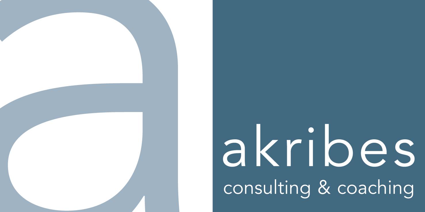 Kooperationspartner und Netzwerk: akibes